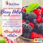 Chocolate Covered Strawberry Boozy Milkshake! 2017 #FWCon #BerryDelish Contest Entry